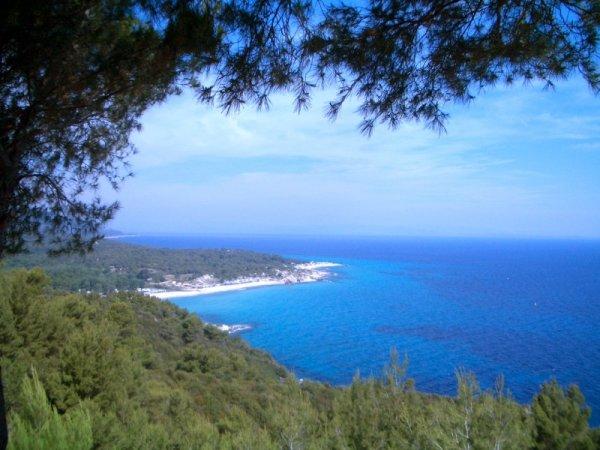 Вилла в остров Сарти недорого